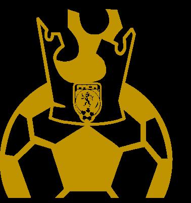 Fotbalista roku